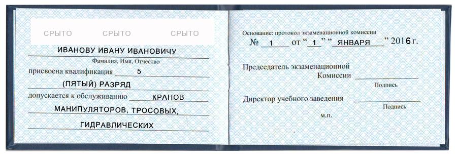 2.jpg.bb5848cdccb7b393bd8b376b64fc0928.jpg